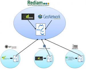 Estructura general de la red